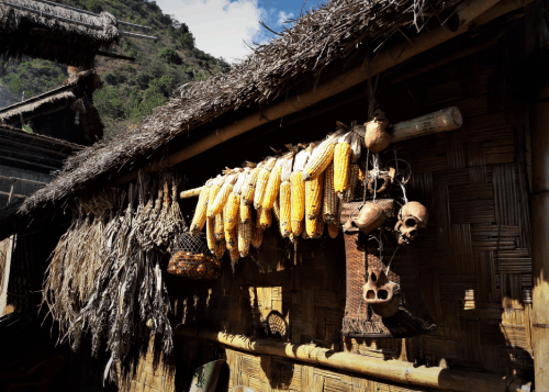 The Naga Culture
