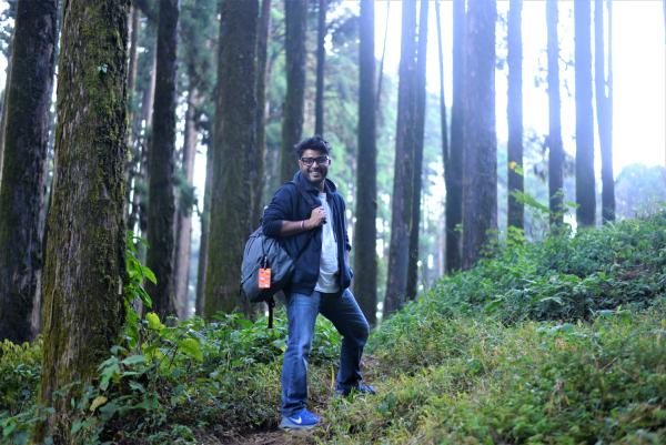 Walk in the woods lamahata